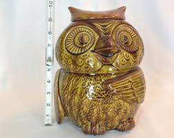 owl kitchen canisters owl cookie jar etsy