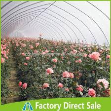 serre horticole en verre rechercher les meilleurs serre horticole occasion fabricants et