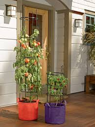 tomato grow bag with 5 u0027 integrated cage gardeners com