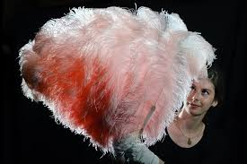 ostrich feather fans pink ostrich feather fan