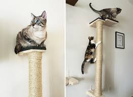cat wall furniture save space in style with these wall mounted cat scratchers catster