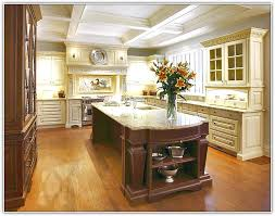 Top Kitchen Cabinet Brands Luxury Kitchen Cabinets Brands Home Design Ideas