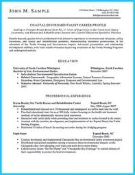 Auto Mechanic Resume Sample by It Director Resumes Google Search Work Pinterest