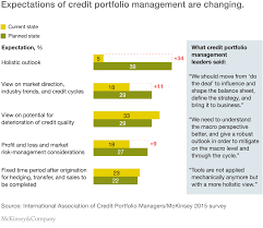the evolving role of credit portfolio management mckinsey u0026 company