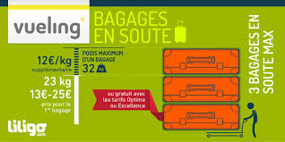 poids si e auto bagages vueling prix poids dimensions liligo com