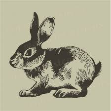 rabbit vintage sketch 12x12 stencil