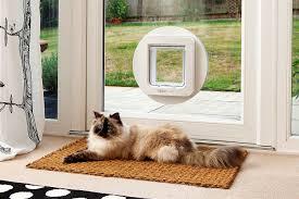 cat running into glass door amazon com sureflap microchip pet door white pet supplies