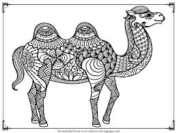 printable camel coloring pages for realistic coloring pages