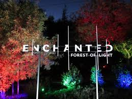 descanso gardens transports you into a holiday enchanted forest