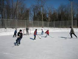Best Backyard Hockey Rinks The Outdoor Hockey Rink Characters We All Know A Gsh Original