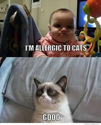 Good Meme Grumpy Cat - grumpy baby vs grumpy cat weknowmemes