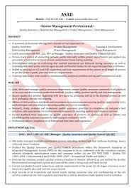 Senior Sales Executive Resume Download Automation Engineer Resume Sample Resume For Software Testing