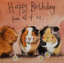happy birthday kim rp repository