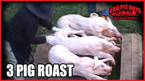 3 pig roast barbecue by the bbq pit boys youtube