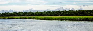 Houses For Sale In Edisto Beach Sc by Edisto Beach Rentals Edisto Island Rentals Edisto Beach