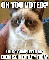 I Voted Meme - oh you voted cat meme cat planet cat planet