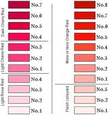 Colour Shades Best 25 Shades Of Red Names Ideas On Pinterest Names Of Colors