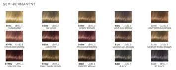 igora hair color instructions igora hair color chart best hair color inspiration 2018