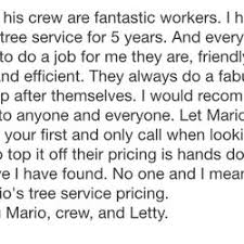 mario s tree service 13 photos 17 reviews tree services