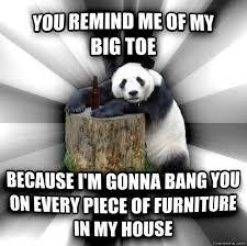 Pick Up Line Panda Meme - livememe com pick up line panda