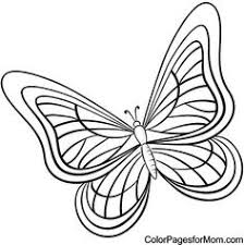 spring birds flowers coloring pages butterfly coloring