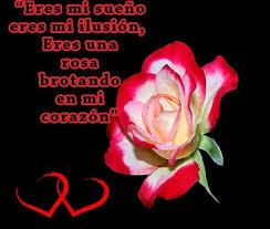 bonitas de rosas rojas con frases de amor imagenes de amor facebook imagenes de rosas rojas con frases de amor rosas de amor