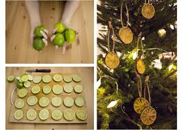 diy christmas decorations dried citrus fruit tiffanyinstitches
