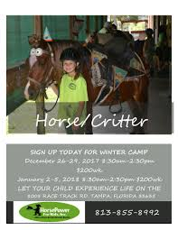 horse power for kids and animal sanctuary in tampa horse power