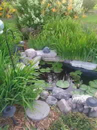 33 best garden pond ideas images on pinterest garden ideas pond