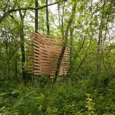 in the woods in the woods with je ahn of studio weave