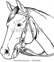 Horse Bridle Decorations Horse Bridle Stock Images Royalty Free Images U0026 Vectors