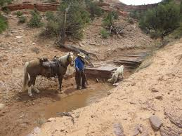 trail rides with jon a showcase for horse trails in utah