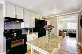 white kitchen with black appliances interior design
