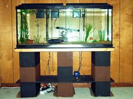 membuat filter aquarium kecil 7 cara membuat aquarium mini sederhana unik di jamin sukses 2017