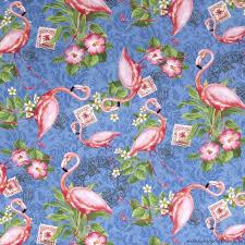 88 best flamingo images on brisbane australia cotton