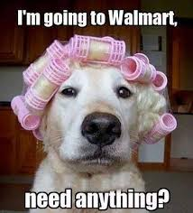 Memes Funny Animals - going to walmart funny quotes memes quote dogs meme funny quotes