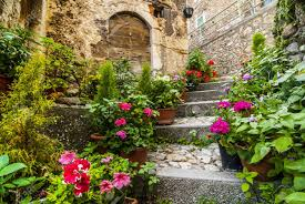 calascio l u0027aquila abruzzi italy houses with plants and