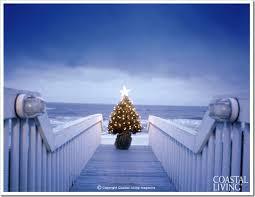 coastal christmas trees sand and sisal