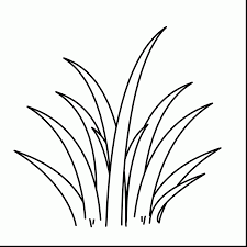 plant coloring pages 2342