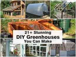 Small Backyard Greenhouse by 26 Best Greenhouse Images On Pinterest Diy Greenhouse Plans
