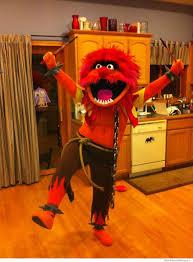 Funny Halloween Animal Costumes 40 Funniest Halloween Costume Ideas Weknowmemes
