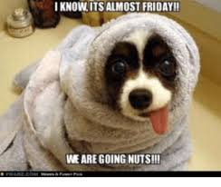 Almost Friday Meme - iknow its almost friday we are going nuts friday meme on me me