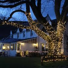 christmas lights to hang on outside tree diy how put christmas lights tall outdoor trees tree steps hang