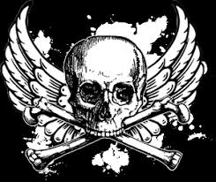 skull and wings backround by beep41 on deviantart
