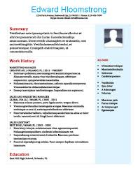Best Sales Resume Format by 22 Contemporary Resume Templates Free Download