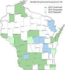 Racine Wisconsin Map by News Spotted Wing Drosophila