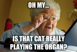 Grandma Computer Meme - grandma computer meme computer best of the funny meme