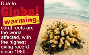 global warming causes and effects crucial causes and appalling effects of global warming