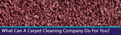 Brisbane Rug Cleaning Advantages Of Professional Carpet Cleaning Pro Carpet Cleaning