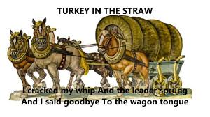 thanksgiving words turkey in the straw words lyrics best popular trending sing along